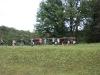 pfingstlager-2011-029
